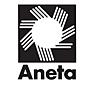 Aneta logo