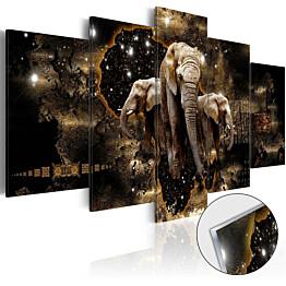 Akryylilasitaulu Artgeist Brown Elephants eri kokoja