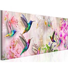 Taulu Artgeist Colourful Hummingbirds eri kokoja