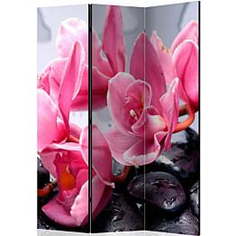 Sermi Artgeist Orchid flowers with zen stones 135x172cm
