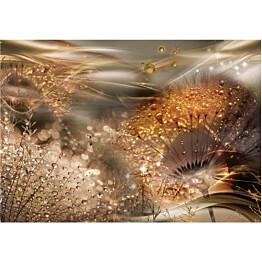 Sisustustarra Artgeist Dandelions' World eri kokoja