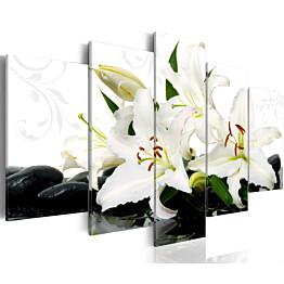 Taulu Artgeist Lilies and zen stones, eri kokoja