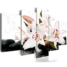 Taulu Artgeist Zen stones and lilies, eri kokoja