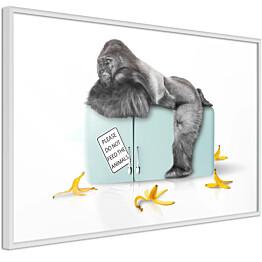 Juliste Artgeist Hungry Gorilla kehyksillä eri kokoja