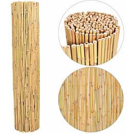Bambuaita, 300x125cm
