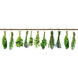 Välitilatarra Dimex Herbs 180x60cm