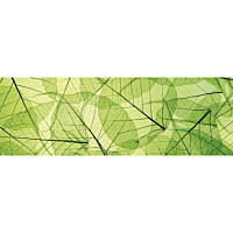 Välitilatarra Dimex Leaf Veins 180x60cm