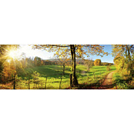 Välitilatarra Dimex Meadow 180x60cm