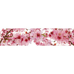 Välitilatarra Dimex Apple Blossom 260x60cm