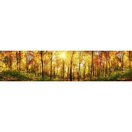 Välitilatarra Dimex Sunny Forest 260x60cm