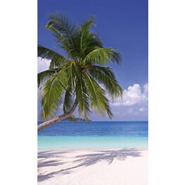 Kuvatapetti Dimex  Beach  150 x 250 cm
