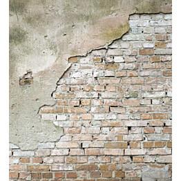 Kuvatapetti Dimex  Grunge Wall 225 x 250 cm