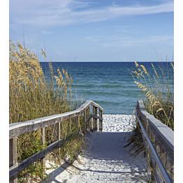 Kuvatapetti Dimex  Sandy Boardwalk 225 x 250 cm