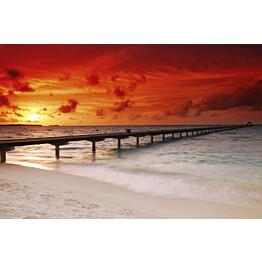 Kuvatapetti Dimex  Jetty In Sunset  375 x 250 cm