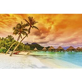 Kuvatapetti Dimex  Polynesia  375 x 250 cm