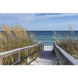 Kuvatapetti Dimex  Sandy Boardwalk 375 x 250 cm