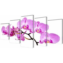 Taulusarja orkidea 100 x 50 cm_1
