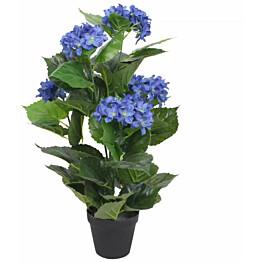 Tekokukka ruukulla hortensia 60 cm sininen_1