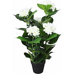 Tekokukka ruukulla hortensia 60 cm valkoinen_1