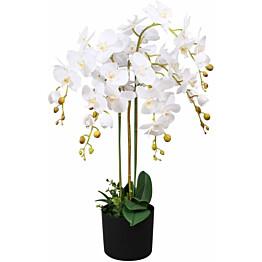 Tekokukka ruukulla orkidea 75 cm valkoinen_1
