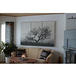 Akustiikkataulu Yeseco Quiet 240x160 cm kollaasi 6 kpl 80x80 cm eri kuvia (myös omalla kuvalla)