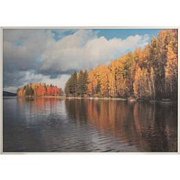 Akustiikkataulu Yeseco Still T 80x60 cm valkoiset puukehykset eri kuvia (myös omalla kuvalla)