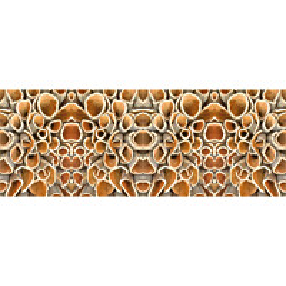 Valokuvatapetti Quattro Cork 8-osainen 372x280 cm