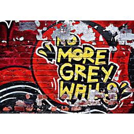 Valokuvatapetti 00126 No More Grey Walls 8-osainen 366x254 cm
