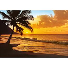 Valokuvatapetti 00218 Pacific Sunset 8-osainen 366x254 cm
