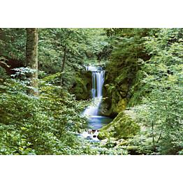 Valokuvatapetti 00279 Waterfall in Spring 8-osainen 366x254 cm