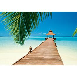 Valokuvatapetti 00284 Paradise Beach 8-osainen 366x254 cm