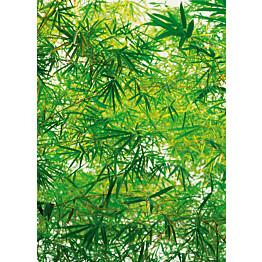 Valokuvatapetti 00372 Bamboo 4-osainen 183x254 cm