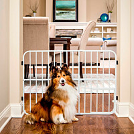 Koira-aita Carlson Tuffy 61x66-107 cm valkoinen