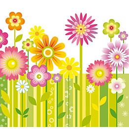 Kuvatapetti Korea kukkaniitty 485011 279x270 cm 6 paneelia