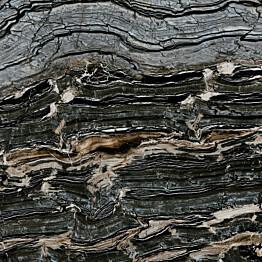 Lattialaatta Pukkila Rock Symphony Glam Musta kiiltävä sileä 594x594 mm