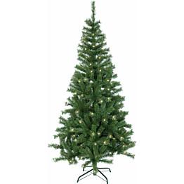 LED-joulukuusi Star Trading Kalix Twinkle 195 cm vihreä