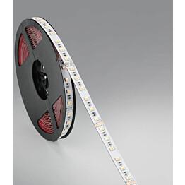 LED-valonauha FTLight 5m 12W/m IP65 RGBW himmennettävä+katkaistava