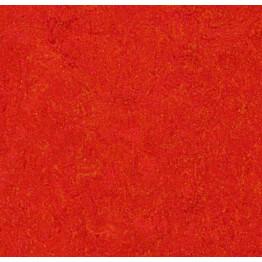 Linoleumilaatta Forbo Marmoleum Click Scarlet 30x30 cm punainen