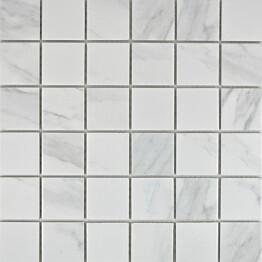 Mosaiikkilaatta Pukkila Carrara himmea karhea 48x48mm