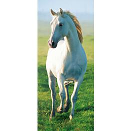 Ovitapetti 00514 White Horse 86x200 cm