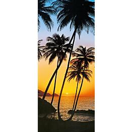 Ovitapetti 00529 Sunny Palms 86x200 cm