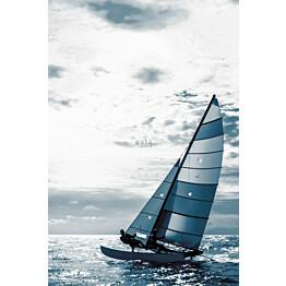 Paneelitapetti Esta Regatta Crew Surf Edition 158846 186x279 cm