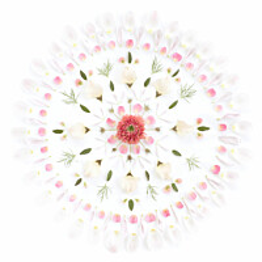Paneelitapetti Sandberg Flower mandala vaaleanpunavalkoinen 0,9 mx0,9 m non-woven