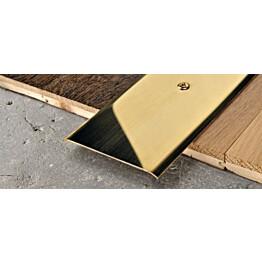 Peitelista Progress Profiles Proplate, 2,7m, 40mm, ruuvikiinnitys, messinki