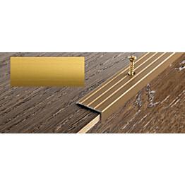 Porraskulmalista Progress Profiles Prowalk, 2,7m, 25mm, 20mm, ruuvikiinnitettävä, anodisoitu kulta