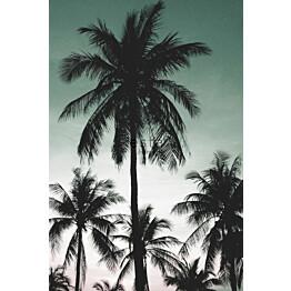 Tapetti ESTA Jungle Fever 158899 1.86x2.79m non-woven monivärinen