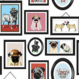 Tapetti Imaginarium 11360 A Pugs Life 0,53x10,05 m monivärinen paperitapetti