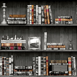Tapetti Imaginarium 11951 Vintage Books 0,53x10,05 m monivärinen paperitapetti