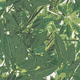 Tapetti Sandudd Belle 5337-3, 0,53x10,05 m, vihreä, non-woven