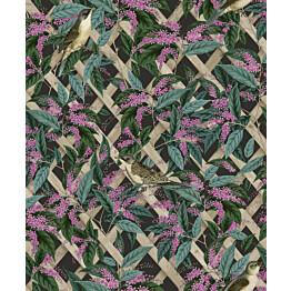 Tapetti Glasshouse 90331 Brassica Charcoal/Pink 0,53x10,05 m monivärinen